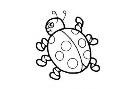 可爱的卡通瓢虫简笔画图片