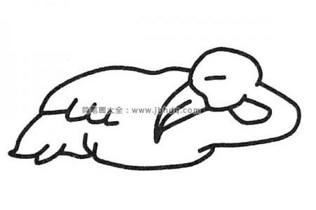 在睡觉的火烈鸟简笔画