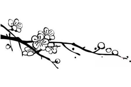 梅花树的树枝简笔画图片