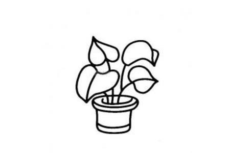 长出叶子的盆栽