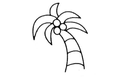 椰子树简笔画图片大全及画法步骤