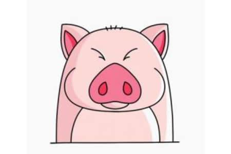 小胖猪简笔画画法