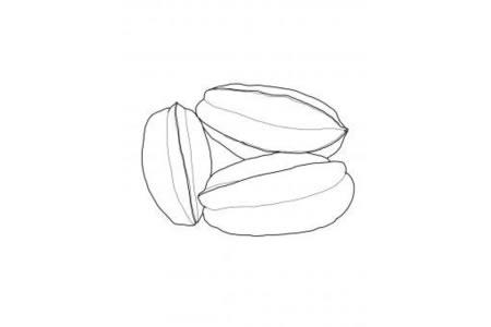 三个杨桃简笔画图片