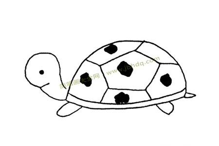 好画得乌龟简笔画图片大全