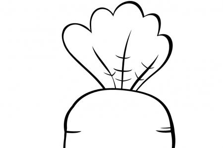 幼儿胡萝卜简笔画图片