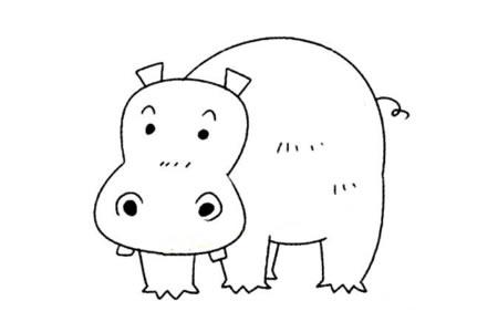 小动物的基本画法 河马简笔画教程