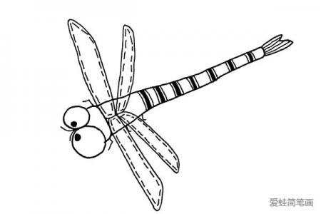可爱蜻蜓简笔画图片