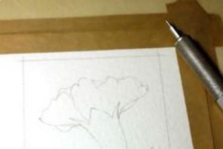 康乃馨怎么画 康乃馨水彩画步骤图分享