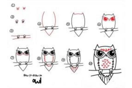 如何画猫头鹰 猫头鹰简笔画教程