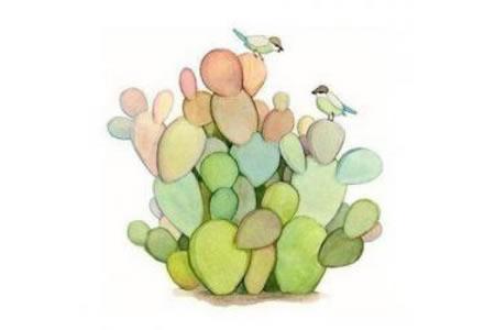 仙人掌和小鸟适合临摹的水彩画作品分享