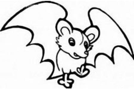 卡通蝙蝠简笔画图片