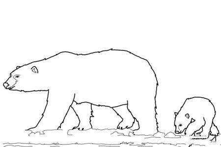 北极熊妈妈和小北极熊