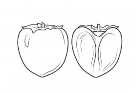 简单的柿子画法