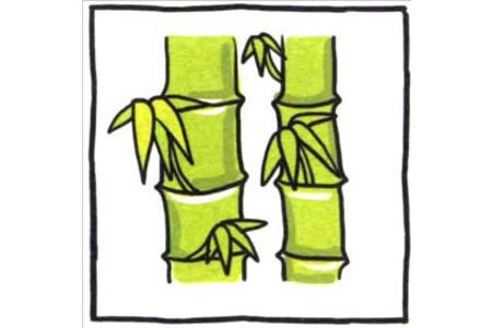 四步画出可爱简笔画 熊猫和我们都爱竹子