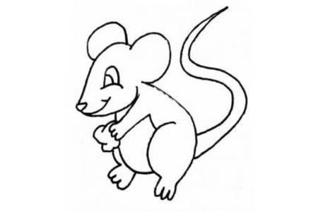 小老鼠偷食简笔画