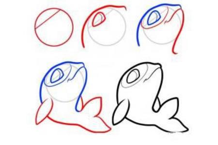 可爱的小海豚简笔画步骤图