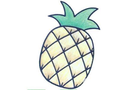 初级简笔画 菠萝