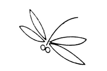 简单的蜻蜓简笔画图片及画法步骤