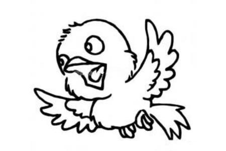 欢喜的小鸟