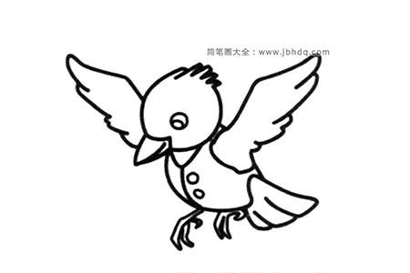 小鸟先生简笔画图片