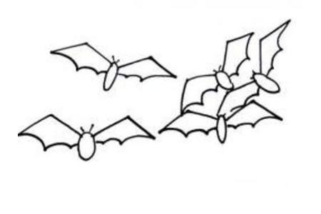 蝙蝠简笔画画法