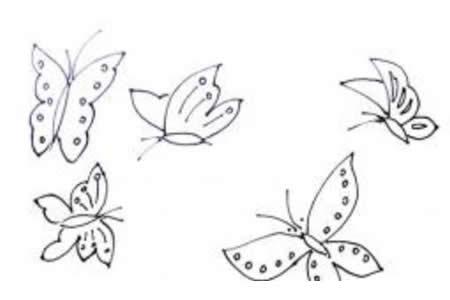 蝴蝶的简笔画画法介绍