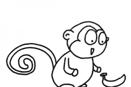 一组可爱的猴子简笔画图片