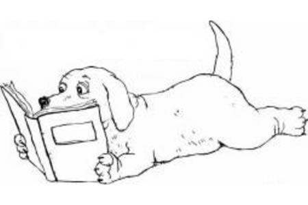 看书的小狗简笔画图片