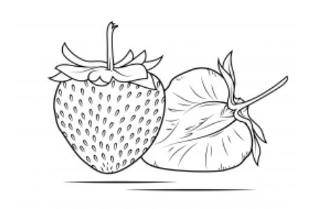 草莓的切面怎么画