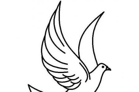 手绘飞翔和平鸽子简笔画