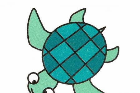 小乌龟简笔画图片教程素描