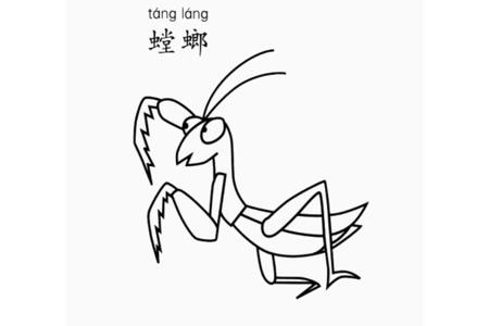 螳螂怎么画