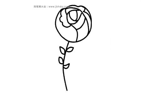 六张漂亮的玫瑰花简笔画图片