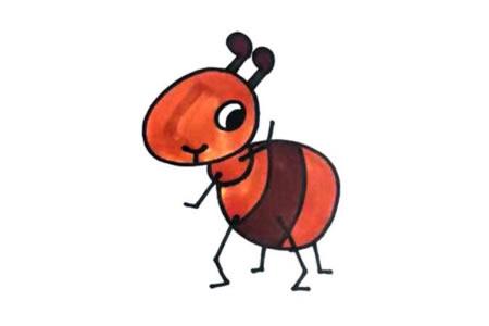 学画蚂蚁视频教程