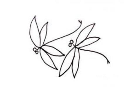 蜻蜓的简笔画画法