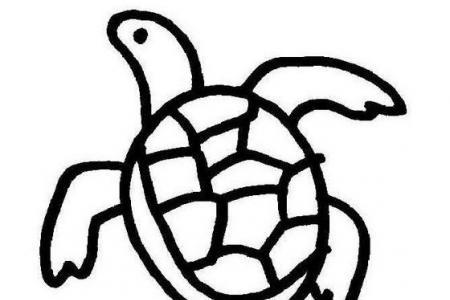 手绘可爱的小乌龟