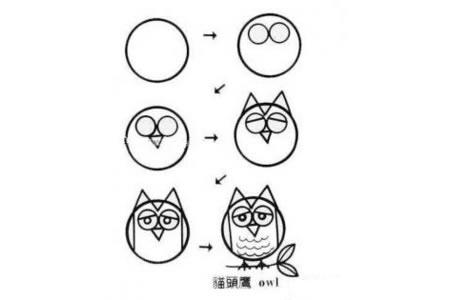 卡通猫头鹰简笔画教程