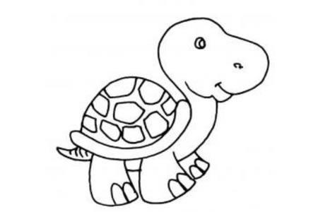 站着的乌龟简笔画