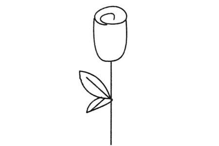 玫瑰花简笔画大全及画法步骤