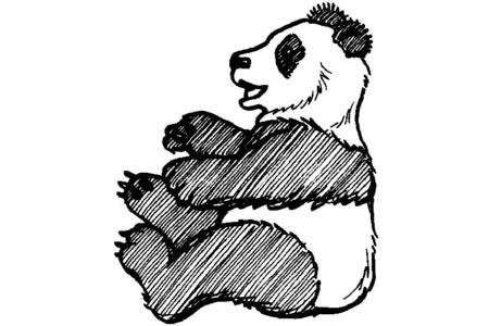 开心的大熊猫简笔画