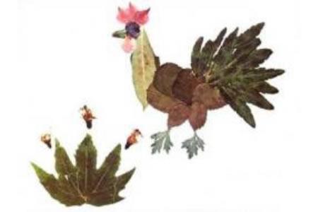 树叶贴画作品:家的大公鸡