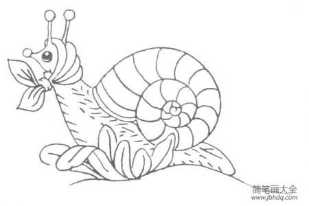 3张可爱的蜗牛简笔画图片