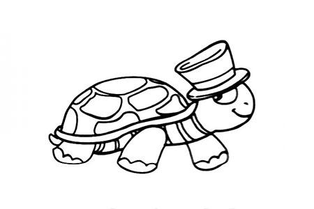 帅气的乌龟先生