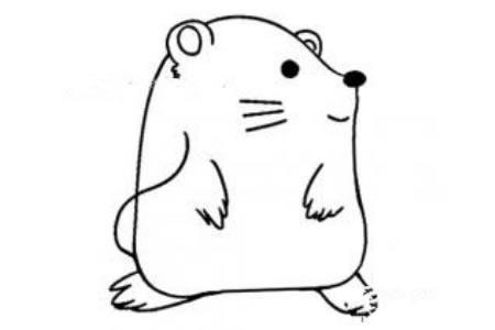 东张西望的小老鼠