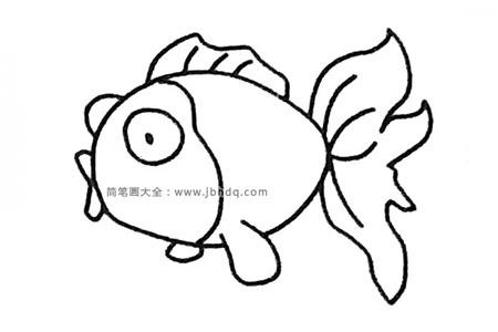 简单四步画出金鱼