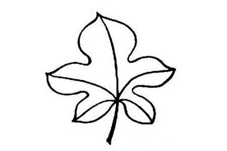 手绘树叶简笔画的画法