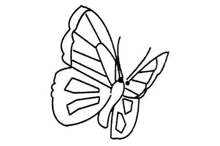 蝴蝶简笔画图片大全及画法步骤