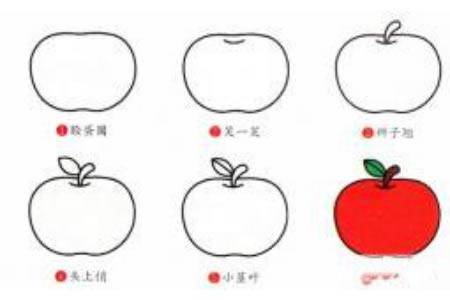 简笔画教程大全 苹果的简笔画步骤