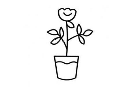 一组简单的盆栽小花简笔画