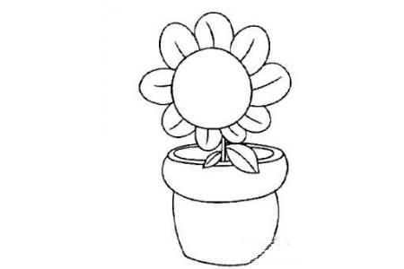 植物大战僵尸里的向日葵简笔画